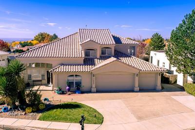 Albuquerque Single Family Home For Sale: 7005 Starshine Street NE