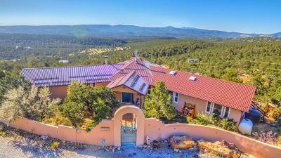 Tijeras, Cedar Crest, Sandia Park, Edgewood, Moriarty, Stanley Single Family Home For Sale: 38 Calyx Lane