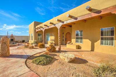 Bernalillo County Single Family Home For Sale: 11501 Ranchitos Road NE