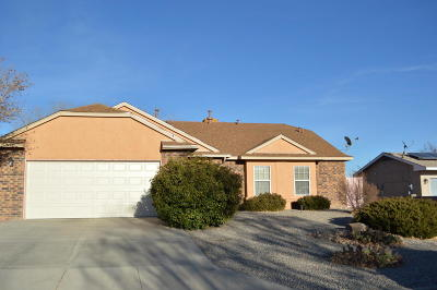 Albuquerque, Rio Rancho Single Family Home For Sale: 7433 Mackenzie Drive NE