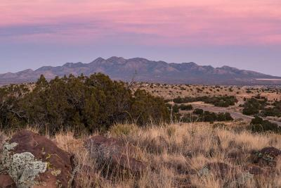 Placitas Residential Lots & Land For Sale: 229 Cornflower Court