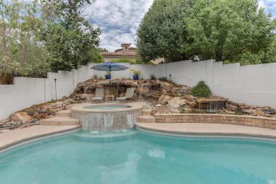 Albuquerque Single Family Home For Sale: 11909 Summerwind Place NE