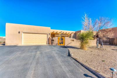 Albuquerque, Rio Rancho Single Family Home For Sale: 4525 17th Avenue NE