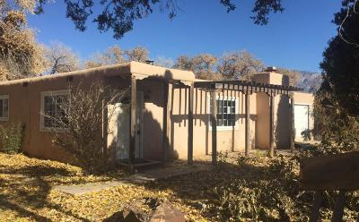 Albuquerque Single Family Home For Sale: 201 Marlowe Lane NE