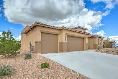 Albuquerque, Rio Rancho Single Family Home For Sale: 5613 Pikes Peak Loop NE