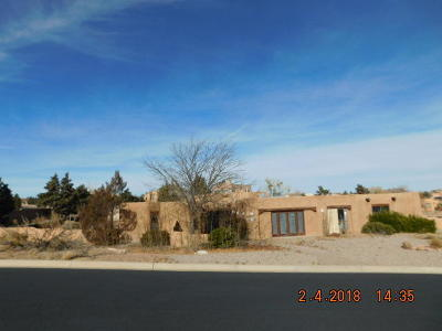 Albuquerque, Rio Rancho Single Family Home For Sale: 2125 Gila River Road NE
