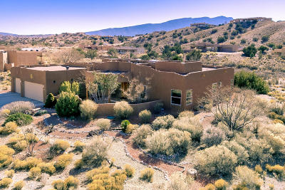 Placitas Single Family Home For Sale: 48 Santa Ana Loop