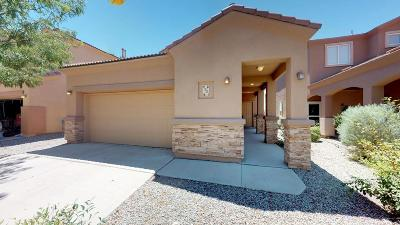 Albuquerque, Rio Rancho Single Family Home For Sale: 2504 Violeta Circle SE