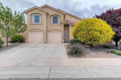 Albuquerque Single Family Home For Sale: 8204 Copperleaf Trail NE