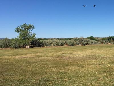 Sandoval County Farm & Ranch For Sale: Sparkling Moolah