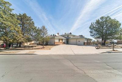 Albuquerque Single Family Home For Sale: 10200 Elmhurst Drive NW