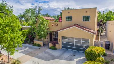 Albuquerque Single Family Home For Sale: 909 Grandview Drive SE