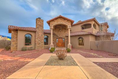 Albuquerque Single Family Home For Sale: 9720 Eagle Rock Avenue NE