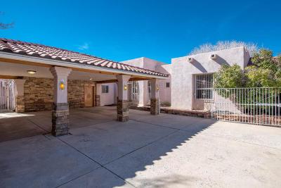 Albuquerque Single Family Home For Sale: 13500 Cedarbrook Avenue NE