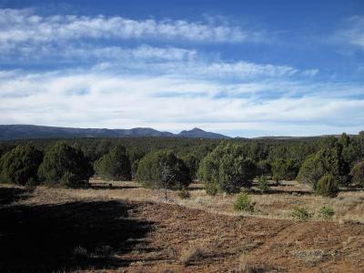 Torrance County Residential Lots & Land For Sale: Camino Del Las Palas (A009)