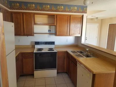 Rio Rancho Single Family Home For Sale: 855 Uranium Drive NE