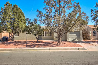 Albuquerque Single Family Home For Sale: 2938 Madison Street NE
