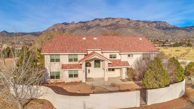 Albuquerque NM Single Family Home For Sale: $570,000