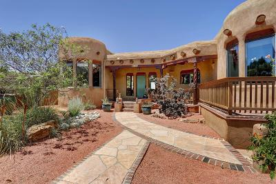 Placitas Single Family Home For Sale: 25 Vista De Oro