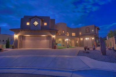 Albuquerque Single Family Home For Sale: 7427 Blue Moon Lane NE