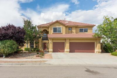 Albuquerque Single Family Home For Sale: 6605 Tesoro Place NE