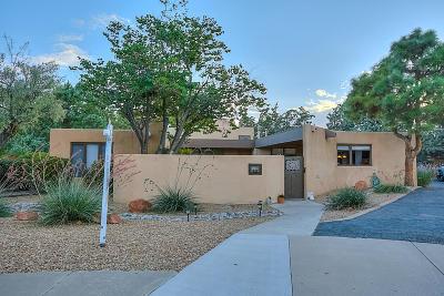 Albuquerque Single Family Home For Sale: 3505 La Sala Redonda NE
