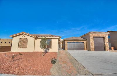 Albuquerque Single Family Home For Sale: 6509 Canavio Place NW