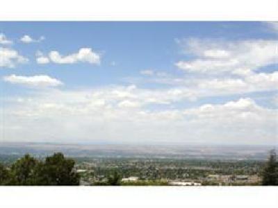 Albuquerque Residential Lots & Land For Sale: 4416 Skyline Court NE