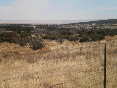 Edgewood Residential Lots & Land For Sale: Lot 4 Sandia Ridge Estates