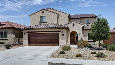 Albuquerque Single Family Home For Sale: 9508 Sandstone Rim Drive NW