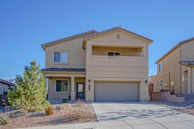 Rio Rancho Single Family Home For Sale: 7231 Wasilla Drive NE