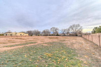 Albuquerque Residential Lots & Land For Sale: 9341 Riverfronte Road NW
