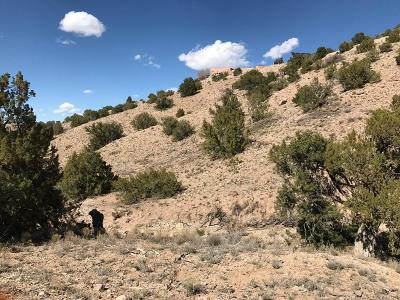Placitas Residential Lots & Land For Sale: Camino Halcon