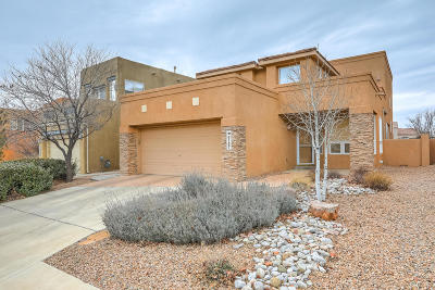 Albuquerque Single Family Home For Sale: 6167 Goldfield Place NE