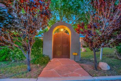 Albuquerque Single Family Home For Sale: 1001 Los Arboles Avenue NW