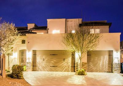 Albuquerque Single Family Home For Sale: 9101 Silverwood Drive NE