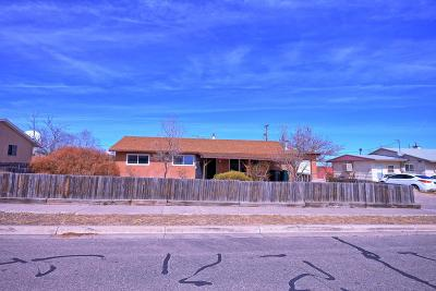 Albuquerque Single Family Home For Sale: 4 Lost Horizon Drive NW