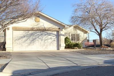 Albuquerque Single Family Home For Sale: 1622 Don Santos Street SW