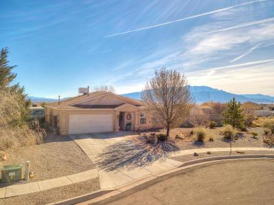 Rio Rancho Single Family Home For Sale: 6522 Freemont Hills Loop NE