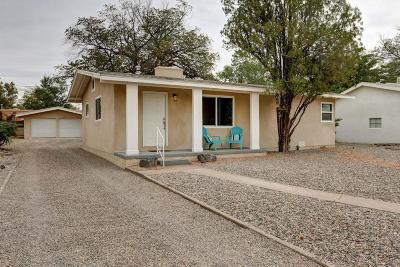 Albuquerque Single Family Home For Sale: 1010 Jackson Street SE