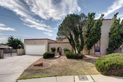 Albuquerque Single Family Home For Sale: 7816 Northridge Avenue NE