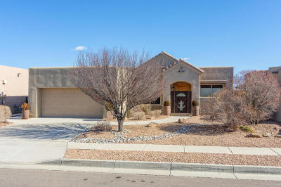 Albuquerque Single Family Home For Sale: 8120 Cayenne Drive NW