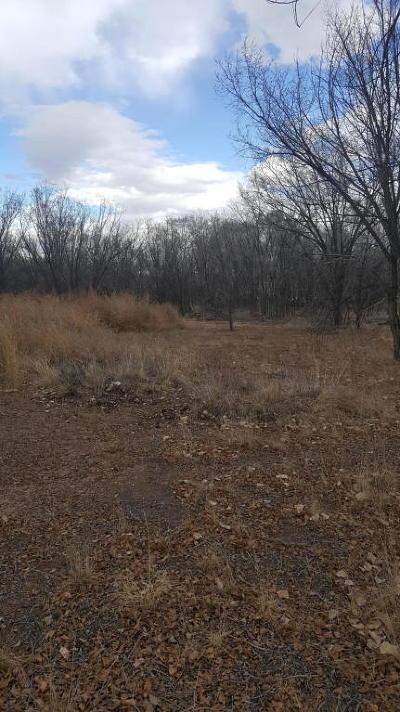 Albuquerque Residential Lots & Land For Sale: 2215 Julie Avenue SW