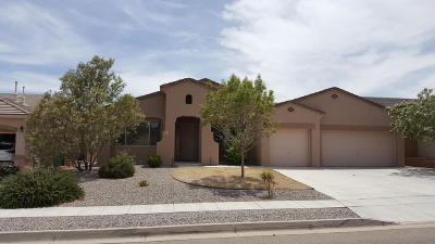 Rio Rancho Single Family Home For Sale: 4216 Cholla Drive NE