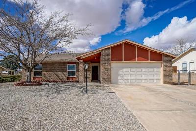 Rio Rancho Single Family Home For Sale: 273 Trinitiy Drive NE