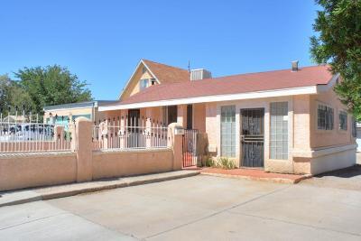 Albuquerque Single Family Home For Sale: 629 San Pablo Street SE