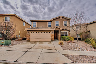 Albuquerque Single Family Home For Sale: 1819 Black Gold Street SE