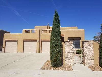 Rio Rancho Single Family Home For Sale: 1401 Wilkes Way SE