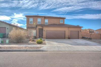 Rio Rancho Single Family Home For Sale: 4718 Big Hawk Road NE