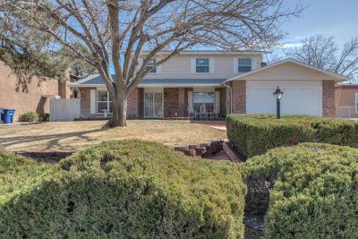 Albuquerque Single Family Home For Sale: 6208 Lola Drive NE